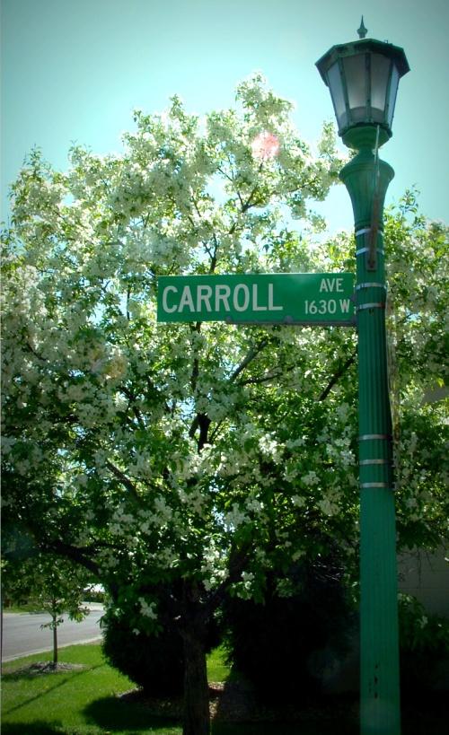 My Street 2