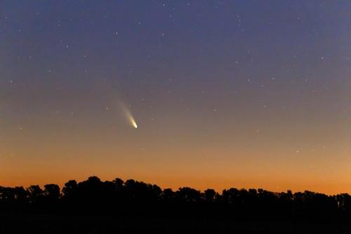 comet-panstarrs-argerich-1