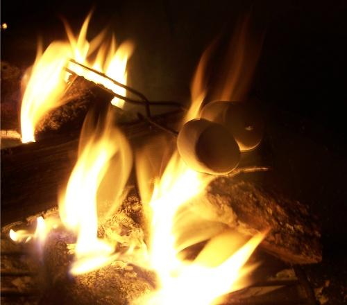 toasted-marshmallows